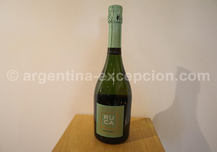 Vin blanc, route des vins argentins, Ruca Malen avec l'agence de voyage Argentina Excepción