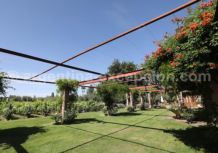 Visiter la bodega Alta Vista dans le Cuyo argentin avec l'agence de voyage Argentina Excepción