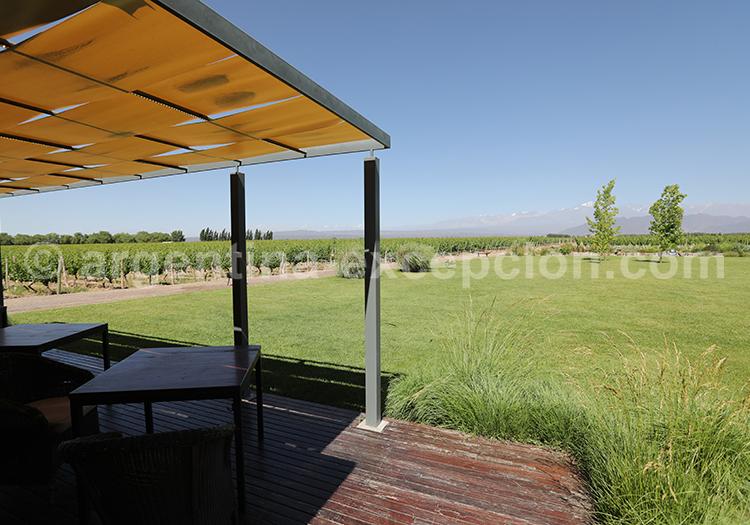 Terrasse de la bodega Ruca Malen, Argentine avec l'agence de voyage Argentina Excepción