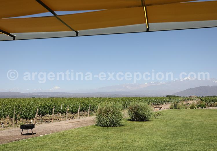 Visiter le domaine viticole Ruca Malen, Argentine avec l'agence de voyage Argentina Excepción