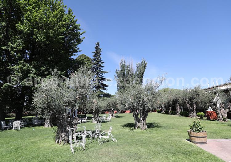Découvrir la bodega Alta Vista dans la région de Mendoza avec l'agence de voyage Argentina Excepción