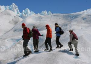 Marche guidée sur le Perito Moreno