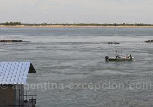 Pêche au surubi, rio Paraná