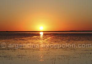 Coucher de soleil sur la lagune Ibera