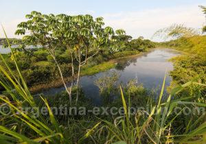 Lagune aux environs de Corpus, Misiones