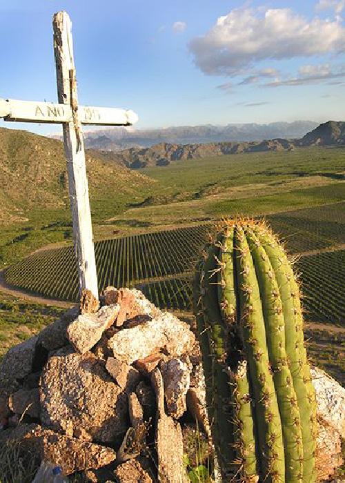 Bodegas de La Rioja et San Juan