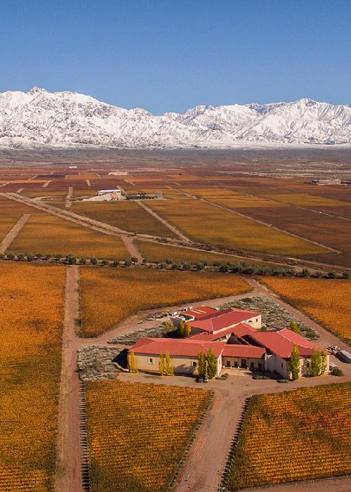 La route des vins argentins