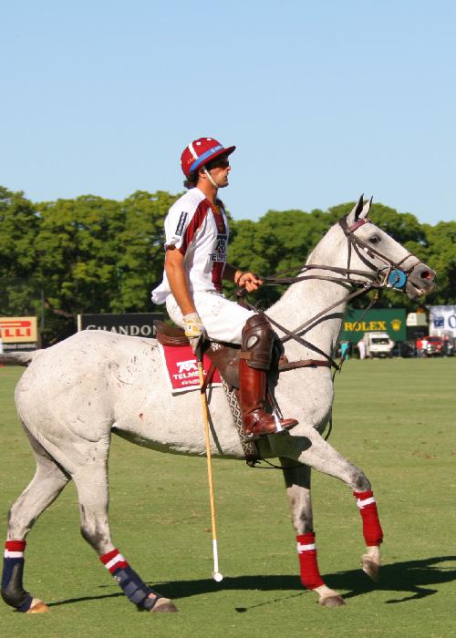 Les joueurs de polo argentins
