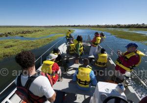Safari nautique Bahia Bustamante