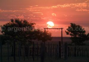 Soleil levant, Estancia Buna Vista, province de Corrientes