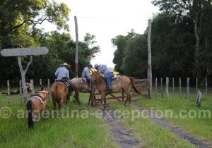 Gauchos au labeur, province de Corrientes