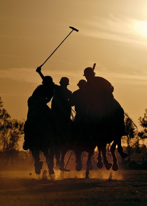 Glossaire du polo