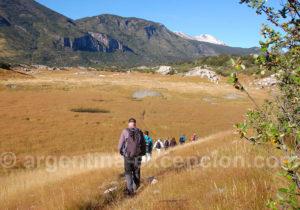 Marche entre le lac Argentino et la lagune frias