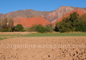 Las Señoritas vallée de Humahuaca