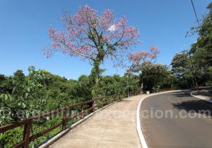 Route menant au port de Puerto Iguazu