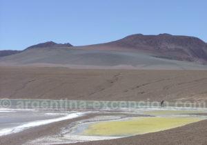 Lagune Brava Argentine