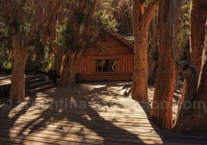 Parc Los Arrayanes Patagonie