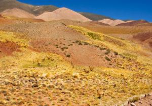 Quebrada del Peñon, Argentine