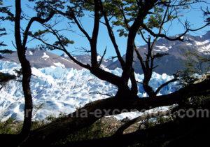 Glacier Periro Moreno depuis la berge sud