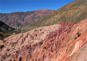 Excursion dans la de la Quebrada de Humahuaca