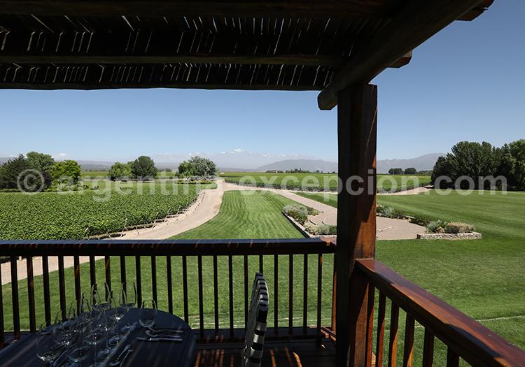 Visiter le domaine Decero, Cuyo, Argentine avec l