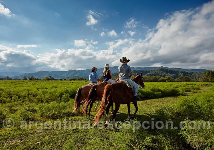 Balade à cheval à El Colibri, Cordoba