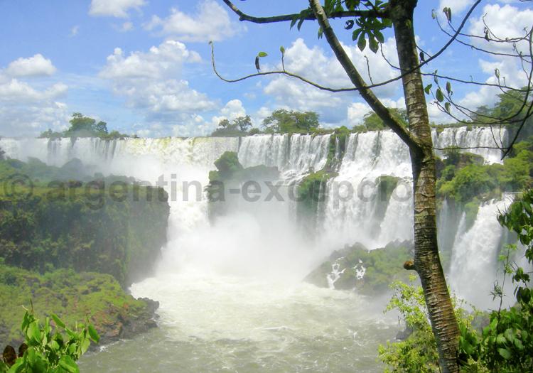 Chutes d'Iguazu coté Argentin