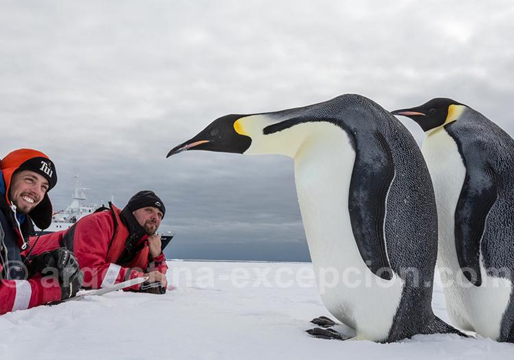 Croisière Antarctique avec les manchots empereurs. © Rolf Stange