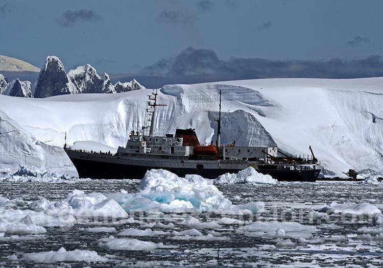 Croisiere Antarctique Malouines Géorgie du Sud de 17 jours sur le MV Ushuaia