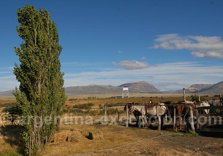 Départ à cheval vers le Cerro Frias