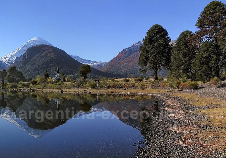Découvrir les araucarias à San Carlos de Bariloche