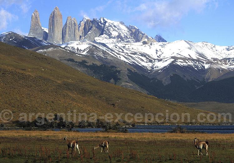 Excursion guidée du parc Torres del Paine