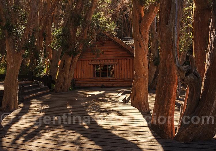 Excursion parc Los Arrayanes