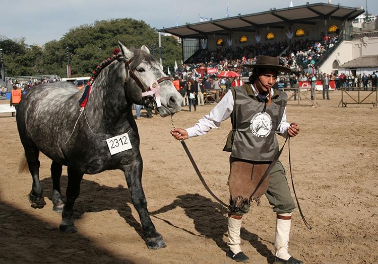 Exposition La Rural