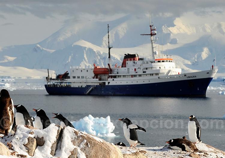 Croisière Antarctique à bord du MV Ushuaia