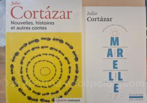 Julio Cortázar le plus français des écrivains argentins