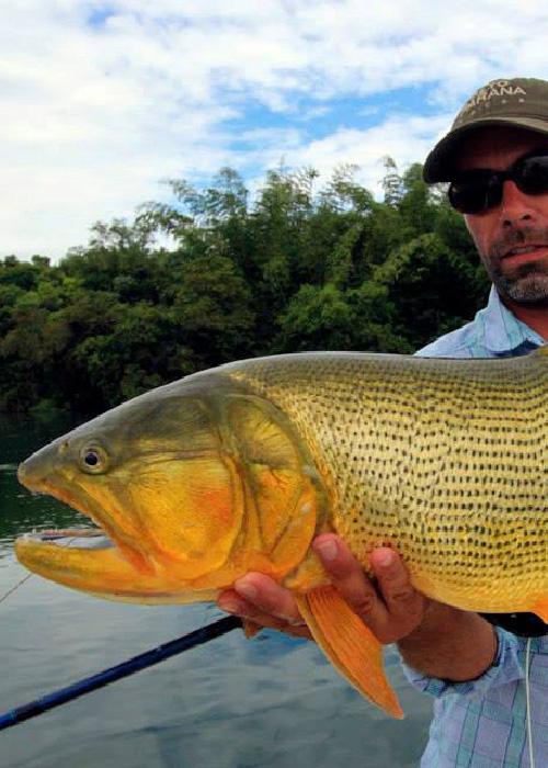 L'Argentine, un paradis pour la pêche sportive