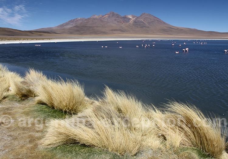 La Bolivie, le plus préservé des pays d'Amérique du Sud