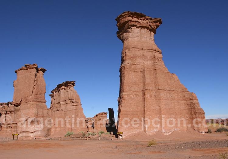 Parc Talampaya Top 5 d'Argentine