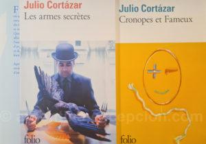 Romans de Julio Florencio Cortázar Descotte