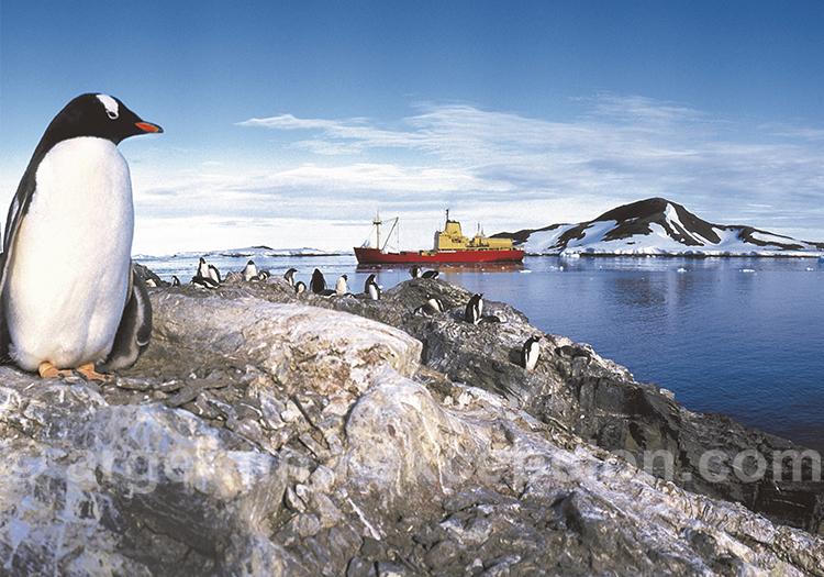 Traité de l'Antarctique et pays présents