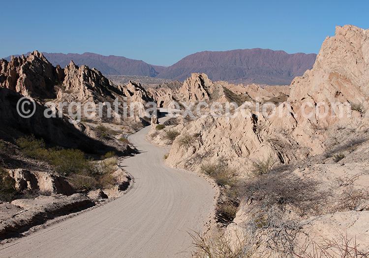La route 40 dans la vallée des Calchaquies