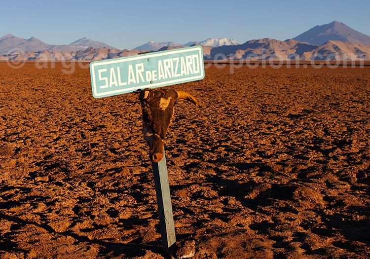 Salar de Arizaro, province de Salta