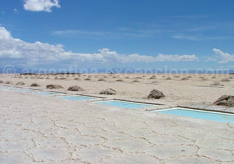 Le désert de sel, Salinas Grandes