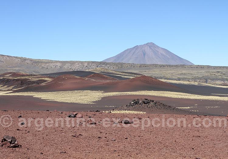 Réserve La Payunia région Cuyo