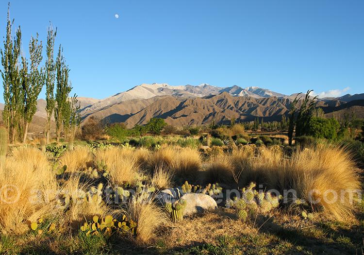 Climat du village de Cachi