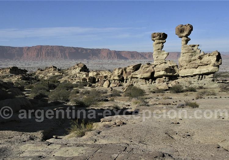 Les formations de la vallée de la Lune, Route 40 argentine
