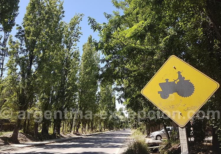 Route des vins avec argentina excepcion